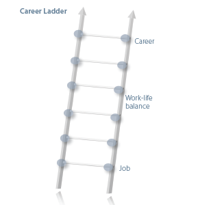 Figure 1. Anatomy of the career ladder